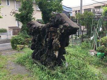 野川北公園003.jpg