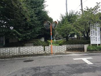 野川緑地公園016.jpg