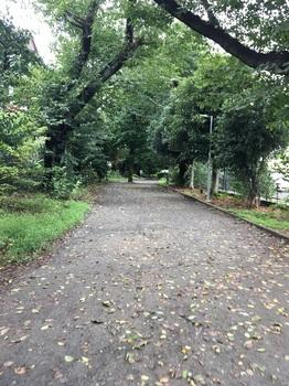 野川緑地公園019.jpg