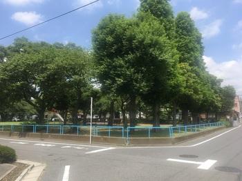 野耕地公園001.jpg