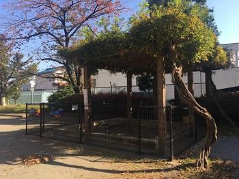 青井南公園005.jpg