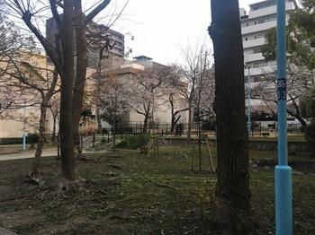 高津公園013.jpg